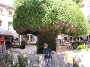 11. Salon-de-Provence_Mossy Fountain
