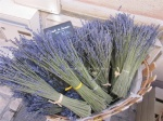 8a. Wednesday  Market St Remy de Provence_Lavender