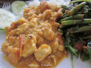 Closed up of the fragrant pandan chicken curry – on my plate ;-)