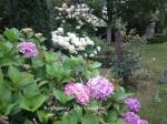 1. Flowerbed1